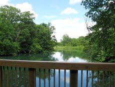 Pond/lake view at Cooper's Cove park