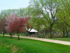 Elbert Park