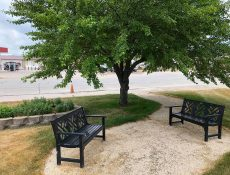Benches and a tree at Gateway Park