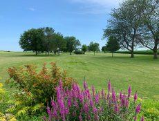 Laurens Golf Course