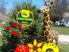 Iowa Hawkeye, Iowa State, John Deere, and other outdoor decorations