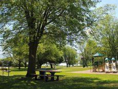 Playground at Sportsman's Park