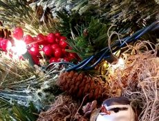 Bird and nest in a Christmas tree