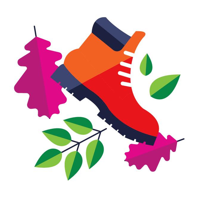 Illustration with hiking boot and leaves